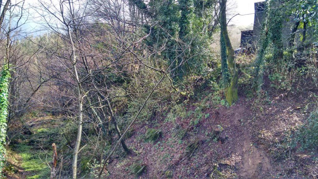 Foxos da posible mina romana de Grobas, en Melide /Elixio Vieites