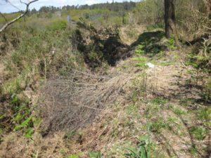 Gabia da posible mina romana de Grobas, en Melide / Elixio Vieites