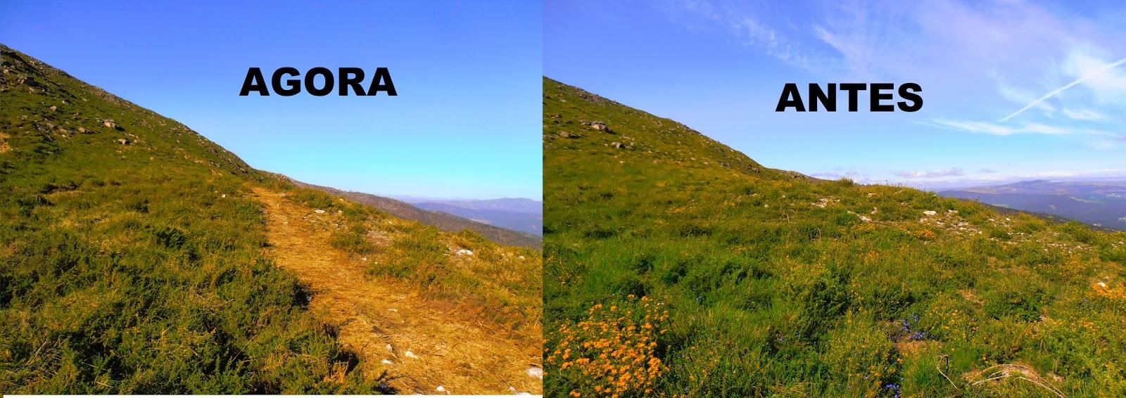 Estado da mámoa do Alto do Marco, no Salgueirón, antes e despois de que unha pista lle pasara por riba / ponteareashistoriaviva.blogspot.com