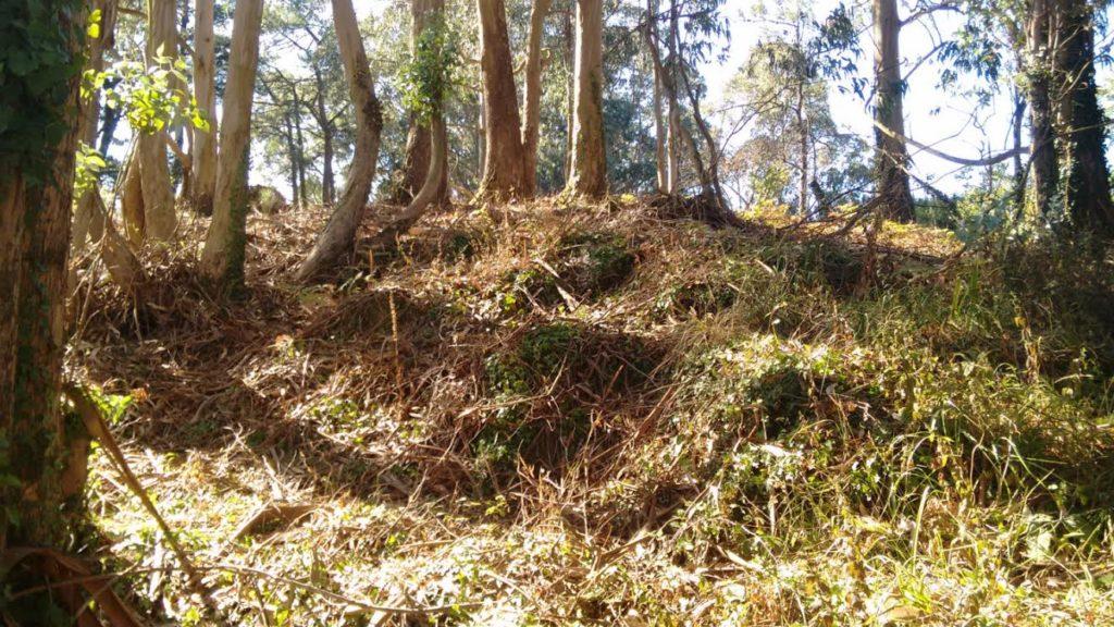 Monte da Torre, en Cortegada, posible fortificación contra os viquingos / Elixio Vieites
