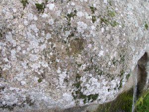 Fonte do Parque dos Condes, en Monforte, cunha coviña nun dos seus laterais / Xabier Moure