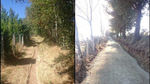 Denuncian que as obras para restaurar tramos do Camiño destrúen tramos tradicionais