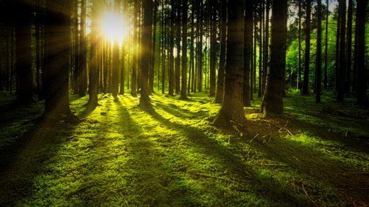 Así será a paisaxe de Galicia… Azul e verde