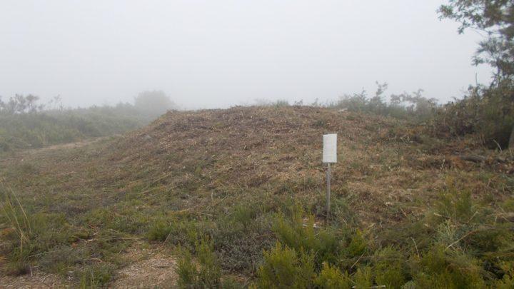 O concello de Cervantes procedeu á limpeza da necrópole megalítica de Savane-Pena dos Mouros / Colectivo Patrimonio dos Ancares